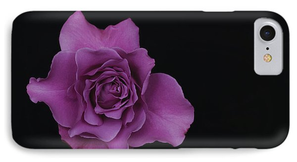 Lavender Rose Phone Case by Dennis Reagan