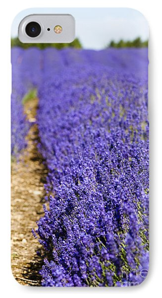 Lavender's Blue Phone Case by Anne Gilbert