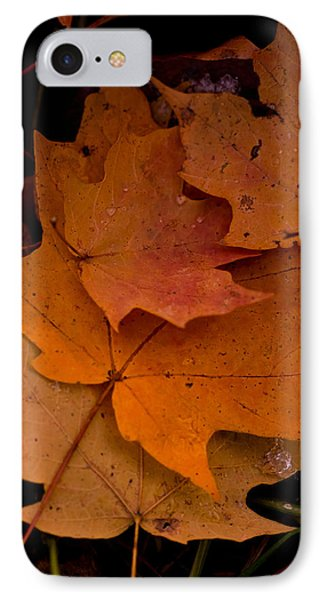 IPhone Case featuring the photograph Layering by Haren Images- Kriss Haren