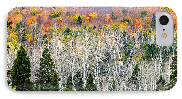 IPhone Case featuring the photograph Layers Of Autumn by Mary Amerman