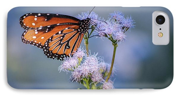 8x10 Metal - Queen Butterfly IPhone Case by Tam Ryan