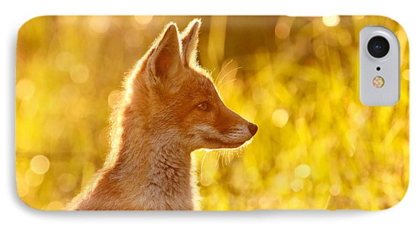 Le P'tit Renard IPhone Case by Roeselien Raimond