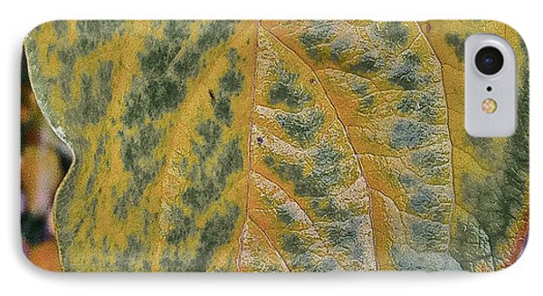 IPhone Case featuring the photograph Leaf After Rain by Bill Owen