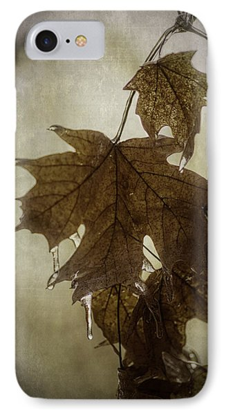 Leaf And Ice With Texture IPhone Case by Wayne Meyer