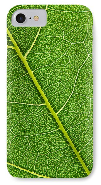 IPhone Case featuring the photograph Leaf Detail by Carsten Reisinger