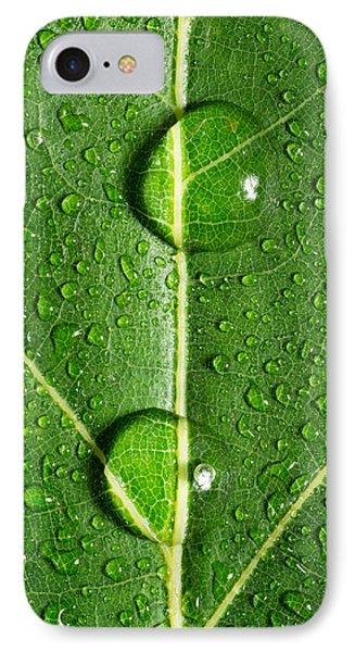 Leaf Dew Drop Number 10 Phone Case by Steve Gadomski