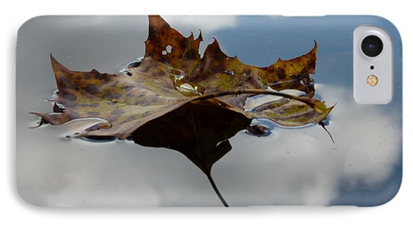 Leaf In Sky IPhone Case by Jane Ford