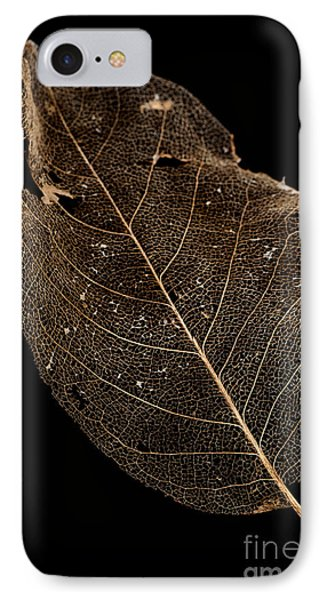 Leaf Lace Phone Case by Anne Gilbert