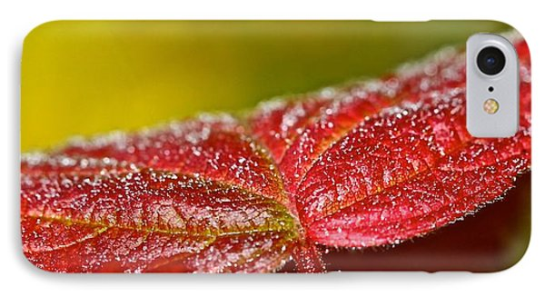 IPhone Case featuring the photograph Leaf by Michaela Preston