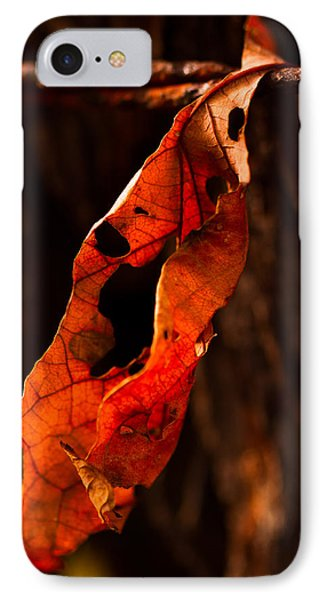 IPhone Case featuring the photograph Leaf On A Wire by Haren Images- Kriss Haren