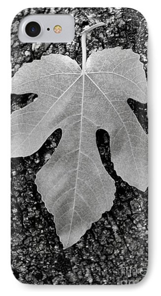 Leaf On Bark Phone Case by Andrew Brooks