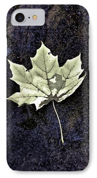 Leaf On Dark Sand IPhone Case by Gary Slawsky