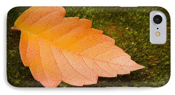 Leaf On Moss Phone Case by Adam Romanowicz