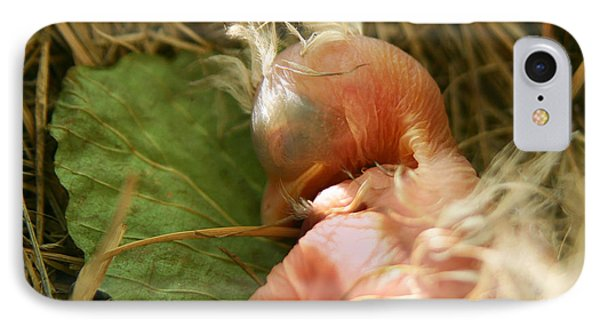 Leaf Pillow IPhone Case by Shane Holsclaw