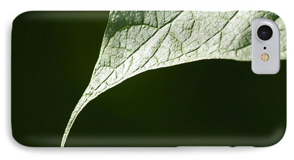Leaf Phone Case by Tony Cordoza