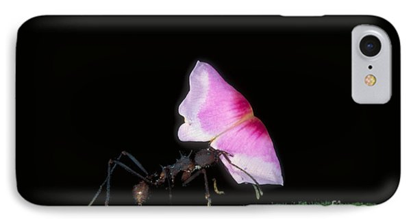 Leafcutter Ant IPhone 7 Case by Gregory G. Dimijian