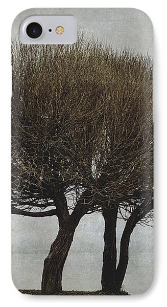 IPhone Case featuring the photograph Leafless Couple by Ari Salmela