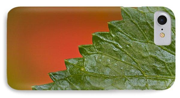 Leafy Phone Case by Heiko Koehrer-Wagner