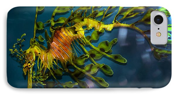 Leafy Sea Dragon Phone Case by Artist and Photographer Laura Wrede