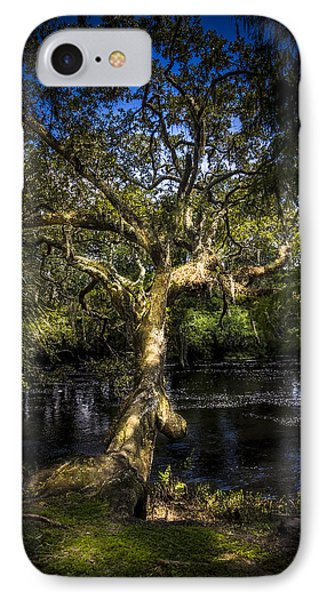 Leaning Oak IPhone Case by Marvin Spates