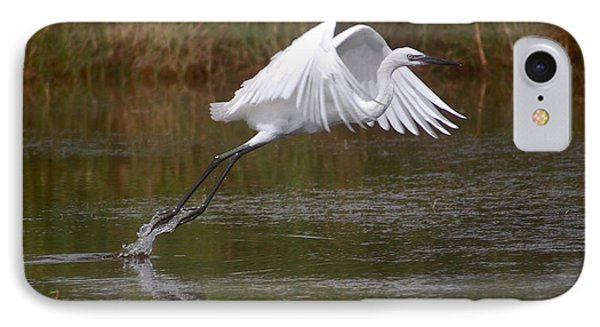 Leaping Egret IPhone Case by Leticia Latocki
