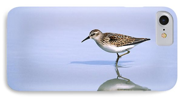 IPhone Case featuring the photograph Least Sandpiper With Reflection And Shadow by Bradford Martin