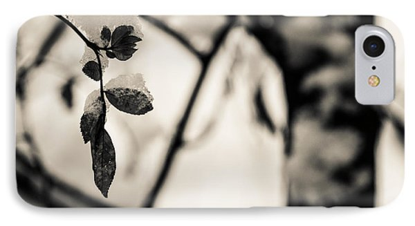 Leaves And Snow Phone Case by Andreas Levi