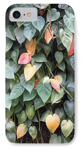 Leaves Phone Case by Cherie Sexsmith