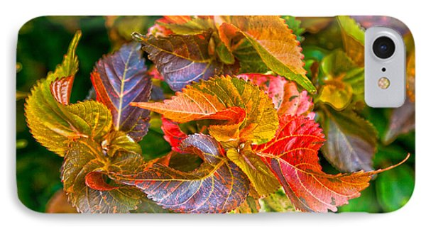 Leaves In Motion IPhone Case by Michelle Wiarda