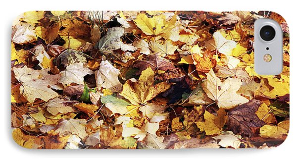 Leaves Phone Case by John Rizzuto