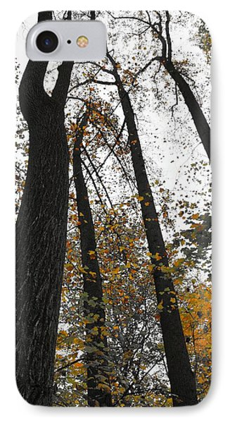 Leaves Lost IPhone Case by Photographic Arts And Design Studio