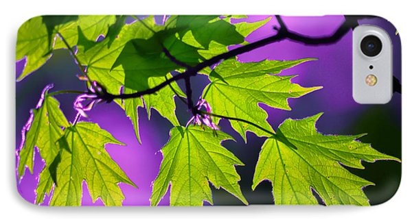 Leaves Of Eve IPhone Case by Brian Stevens