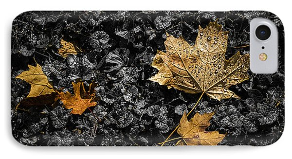 Leaves On Forest Floor IPhone Case by Tom Mc Nemar