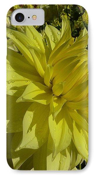 Lemon Yellow Dahlia  IPhone Case by Susan Garren