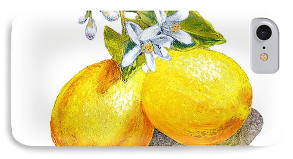 IPhone Case featuring the painting Lemons And Blossoms by Irina Sztukowski