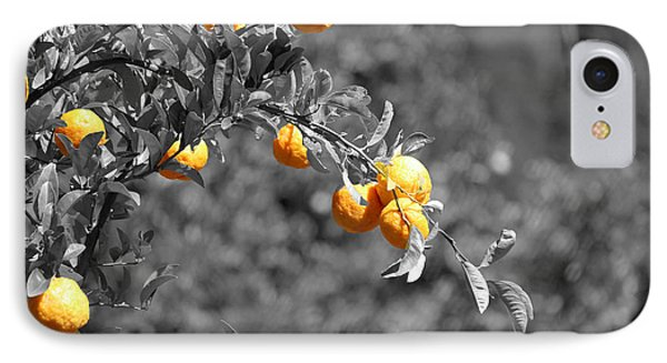 Lemons IPhone Case by Chris Whittle