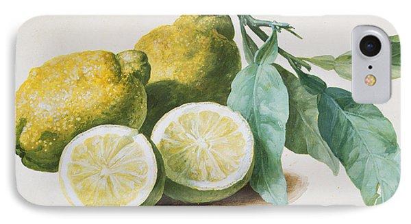 Lemons Phone Case by Pierre Joseph Redoute