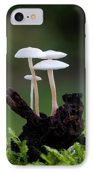Lentil Shanklet Fungus IPhone Case