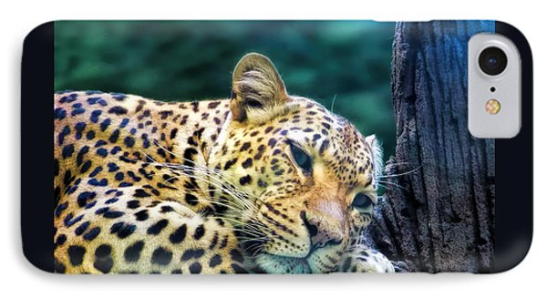 IPhone Case featuring the photograph Leopard 1 by Dawn Eshelman