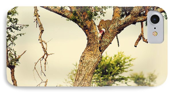 Leopard Eating His Victim On A Tree In Tanzania Phone Case by Michal Bednarek