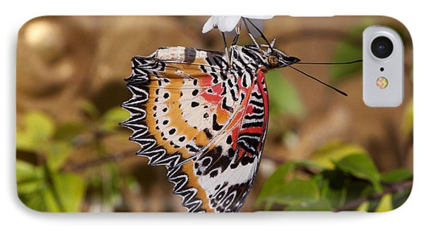 IPhone Case featuring the photograph Leopard Lacewing Butterfly Dthu619 by Gerry Gantt
