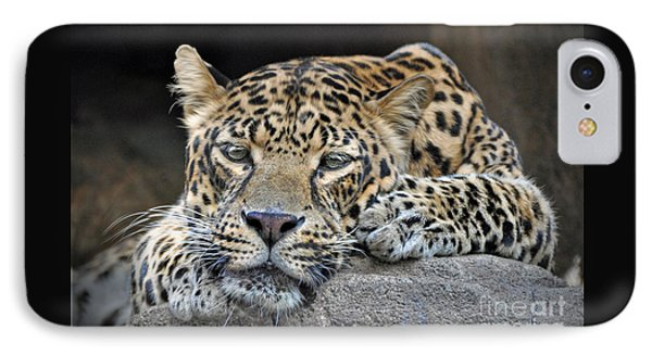 IPhone Case featuring the photograph Leopard by Savannah Gibbs