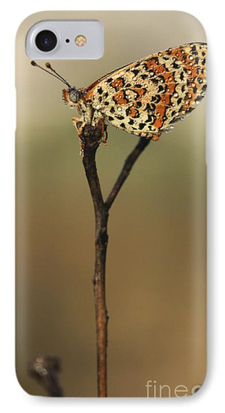 Lesser Spotted Fritillary Phone Case by Alon Meir