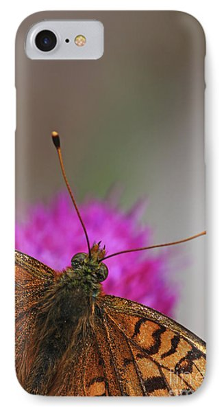 Lesser Spotted Fritillary Phone Case by Amos Dor