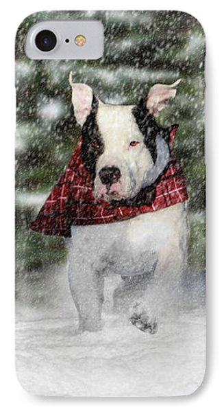 Snow Day IPhone Case by Shelley Neff