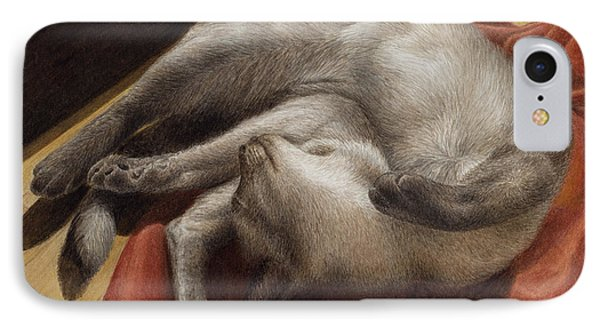 Let Sleeping Kitties Lie IPhone Case by Pat Erickson