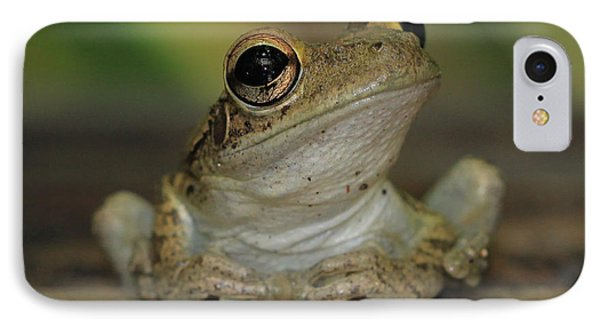 Let's Talk - Cuban Treefrog IPhone Case by Meg Rousher