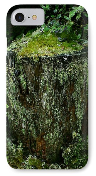 IPhone Case featuring the photograph Lichen And Moss Covered Stump by Amanda Holmes Tzafrir