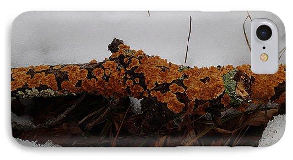 Lichen N'snow IPhone Case by Robert Nickologianis