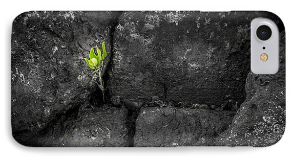 Life Finds A Way IPhone Case by Marvin Spates
